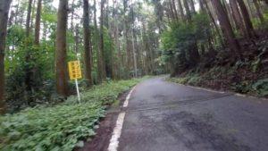 羽黒山 ヒルクライム イノシシ