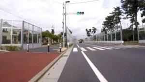 大柏川 自転車