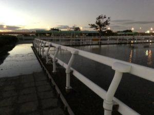 江戸川 ポニーランド 台風 浸水