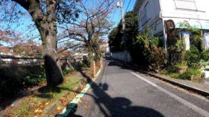 真間川 自転車