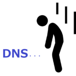 新型コロナの影響でブルべはDNSへ・・・