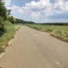 ロードバイク トレーニング 手賀沼