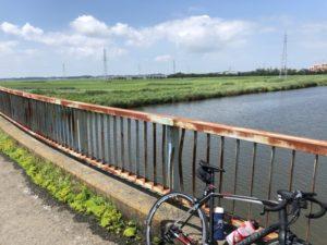 ロードバイク 夏 手賀沼
