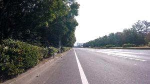 ロードバイク 千葉県