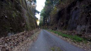 野見金山 林道