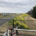 江戸川サイクリングロードへ