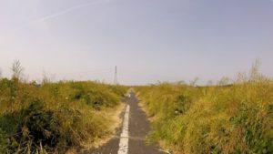 江戸川サイクリングロード 狭い