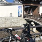 江戸サイで関宿城まで