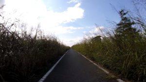 手賀川 ロードバイク